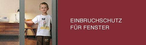 EINBRUCHSCHTZ FENSTER